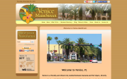 Venice Main Street website screenshot